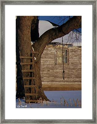A Shady Past Framed Print by Ed Smith