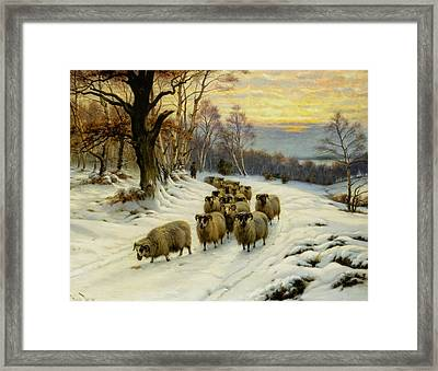 A Shepherd And His Flock  Framed Print by MotionAge Designs
