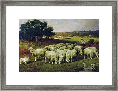 A Shepherd With His Sheep Out In The Field, 1898 Framed Print