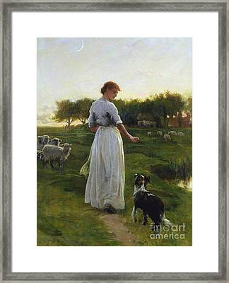 A Shepherdess With Her Dog And Flock In A Moonlit Meadow Framed Print