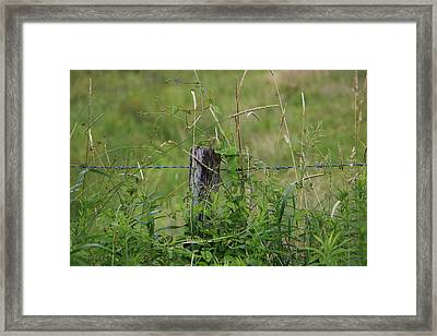 A Simple Post Framed Print