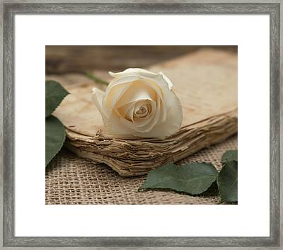Framed Print featuring the photograph A Simple Time by Kim Hojnacki