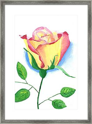 Framed Print featuring the painting A Single Rose by Rodney Campbell