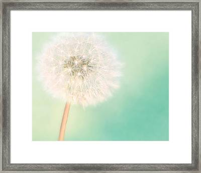 A Single Wish II Framed Print by Amy Tyler
