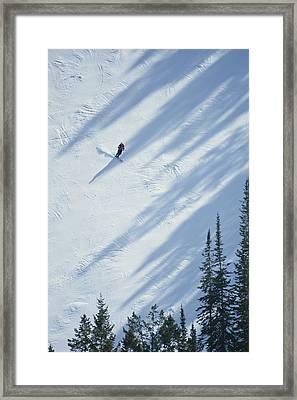 A Skier Glides Across A Pine-shadowed Framed Print