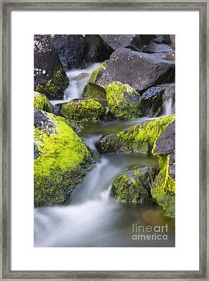 A Small Stream Framed Print by Tim Grams