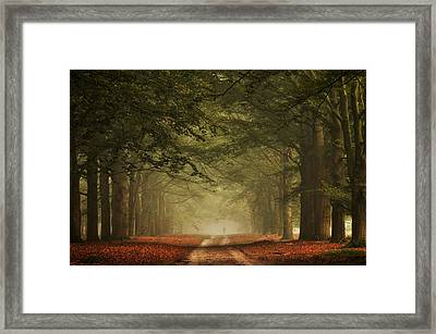 A Small World Framed Print by Martin Podt