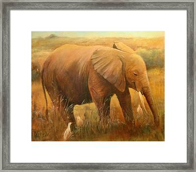 A Smiling Baby Framed Print by Sally Seago