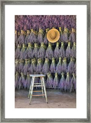 A Sniff Of Lavender Framed Print by Lori Deiter