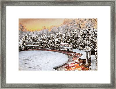 A Snowy Day In The Park Framed Print by Dan Carmichael
