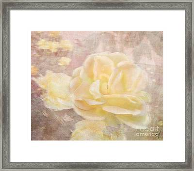 A Softer Rose Framed Print by Victoria Harrington