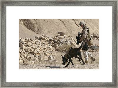 A Soldier And His Dog Search An Area Framed Print by Stocktrek Images
