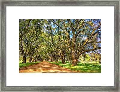 A Southern Lane 3 - Paint Framed Print by Steve Harrington