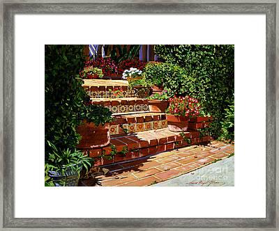 A Spanish Garden Framed Print by David Lloyd Glover