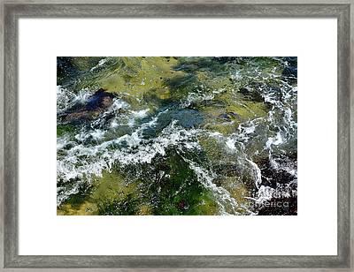 A Sparkling Ocean Palette Framed Print