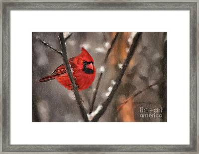 A Spot Of Color Framed Print by Lois Bryan