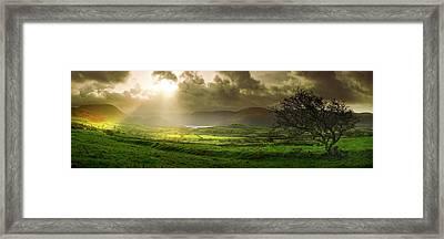 A Spot Of Sunshine Framed Print