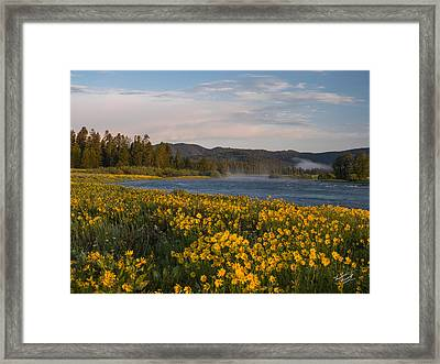 A Spring Morning Framed Print