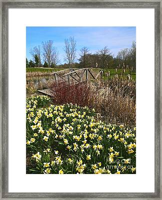 A Spring Pathway Framed Print by Robert Pearson