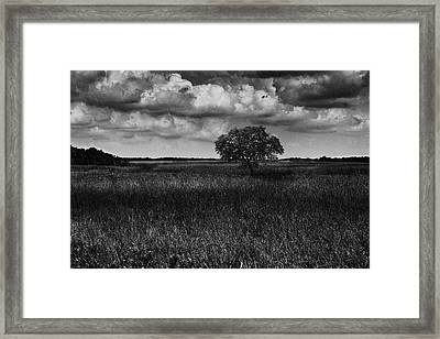A Storm Is Coming To Wyoming Grasslands Framed Print
