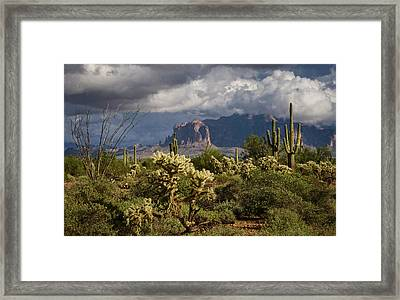 A Stormy Sonoran Day  Framed Print