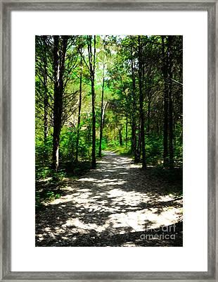 A Straight And Narrow Path Framed Print by Mel Steinhauer