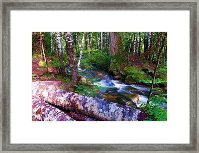 A Stream Through The Forest  Framed Print