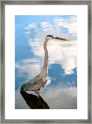 A Stroll Among The Clouds Framed Print by Christopher Holmes
