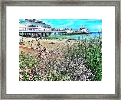A Stroll At The Seaside  Framed Print
