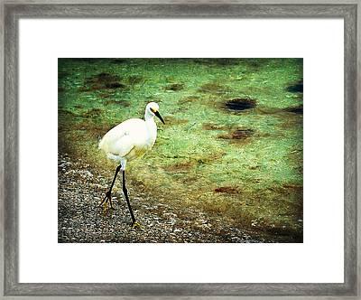 A Stroll On The Beach Framed Print by Marty Koch