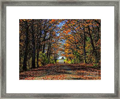 A Stroll Through Autumn Colors Framed Print