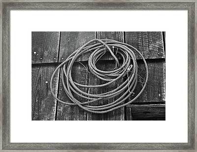 A Study Of Wire In Gray Framed Print by Douglas Barnett