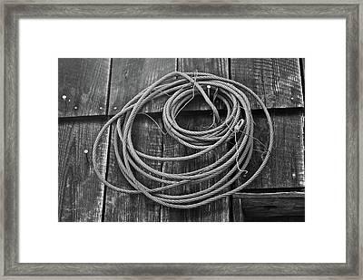 A Study Of Wire In Gray Framed Print by Douglas Barnett