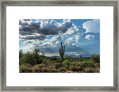 Framed Print featuring the photograph A Summer Day In The Sonoran  by Saija Lehtonen