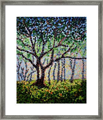 A Summer Forest Framed Print by Mats Eriksson