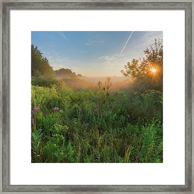 A Summer Morning 2016 Square Framed Print