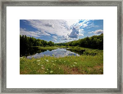 Framed Print featuring the photograph A Summer Morning At The Bridge by David Patterson