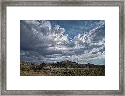A Summer's Day Framed Print