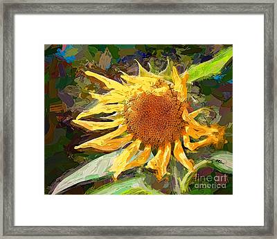 A Sunkissed Life Framed Print