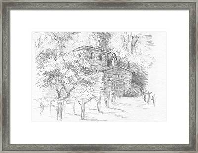 A Sunny Day In The Vineyard Framed Print