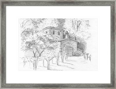 A Sunny Day In The Vineyard Framed Print by Masha Batkova