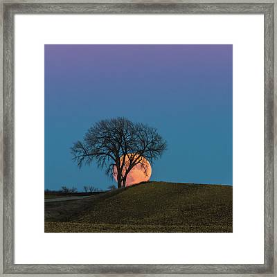 A Super Evening Framed Print