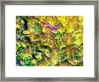 A Surreal Environment Framed Print