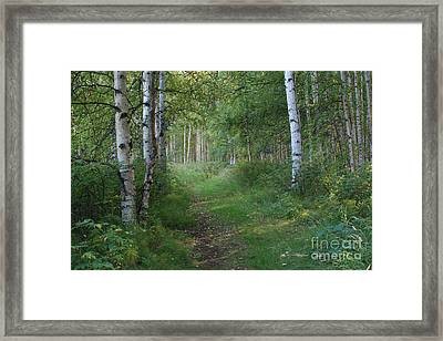 A Suspended Silence Where The Wild Things Are Framed Print