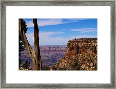 A Sweeping View Framed Print