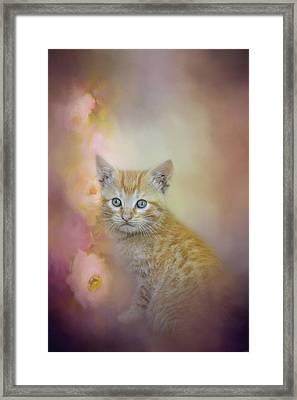 A Sweet Moment Framed Print