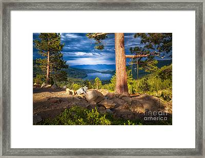 A Swing With A View Framed Print