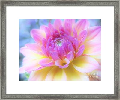 A Symphony Of Light Framed Print