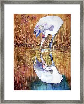 A Taste Of Autumn Framed Print by Vicky Lilla