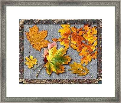 A Taste Of Fall Framed Print by Doreen Whitelock